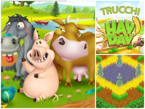 Cosa Seminare A Gennaio trucchi su cosa seminare su hay day e quali animali allevare